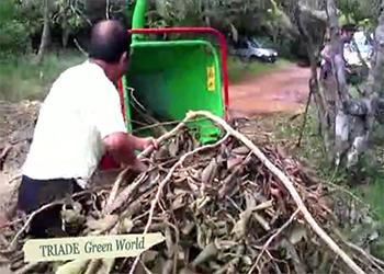 Fertilisation des sols en Guyane